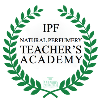Teacher's Academy logo